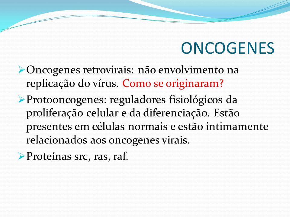 ONCOGENES Oncogenes retrovirais: não envolvimento na replicação do vírus. Como se originaram? Protooncogenes: reguladores fisiológicos da proliferação