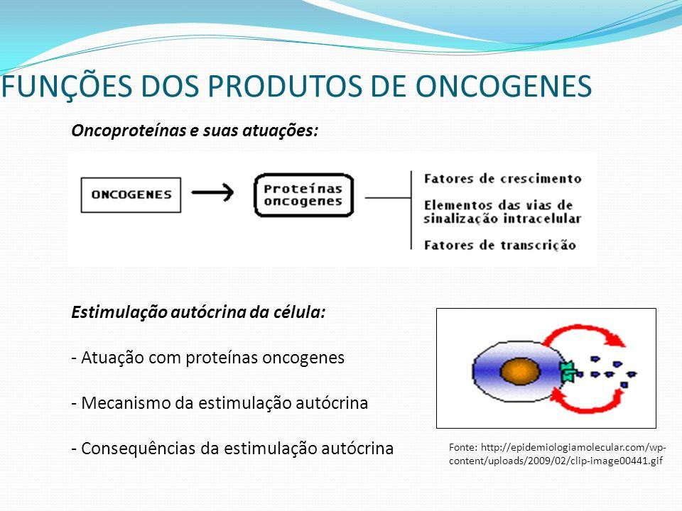 FUNÇÕES DOS PRODUTOS DE ONCOGENES Oncoproteínas e suas atuações: Estimulação autócrina da célula: - Atuação com proteínas oncogenes - Mecanismo da estimulação autócrina - Consequências da estimulação autócrina Fonte: http://epidemiologiamolecular.com/wp- content/uploads/2009/02/clip-image00441.gif