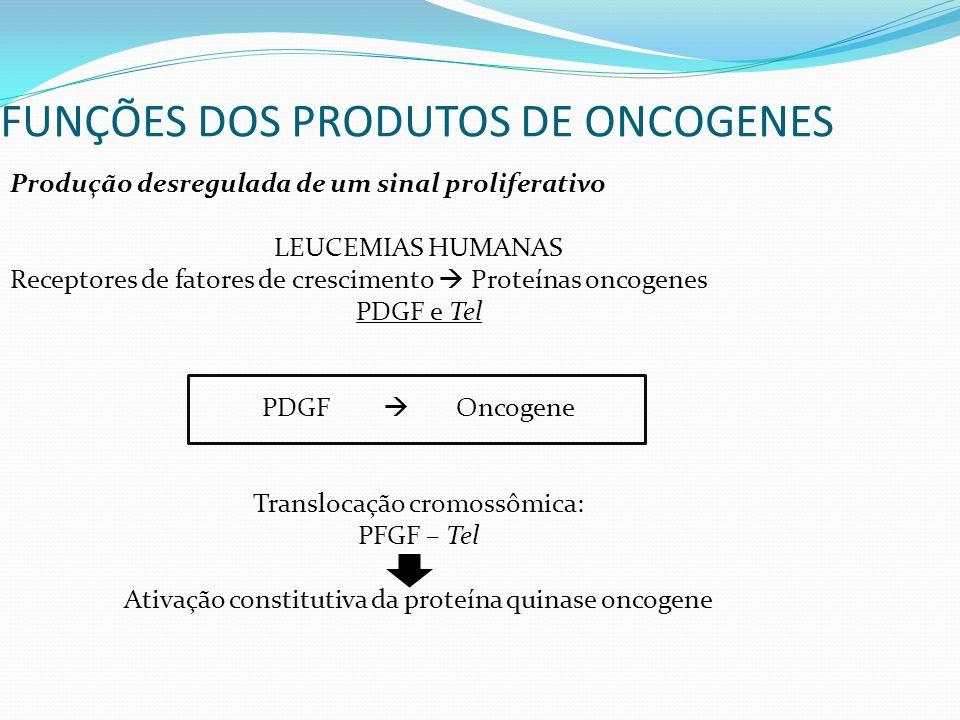 Produção desregulada de um sinal proliferativo LEUCEMIAS HUMANAS Receptores de fatores de crescimento Proteínas oncogenes PDGF e Tel PDGF Oncogene Translocação cromossômica: PFGF – Tel Ativação constitutiva da proteína quinase oncogene FUNÇÕES DOS PRODUTOS DE ONCOGENES