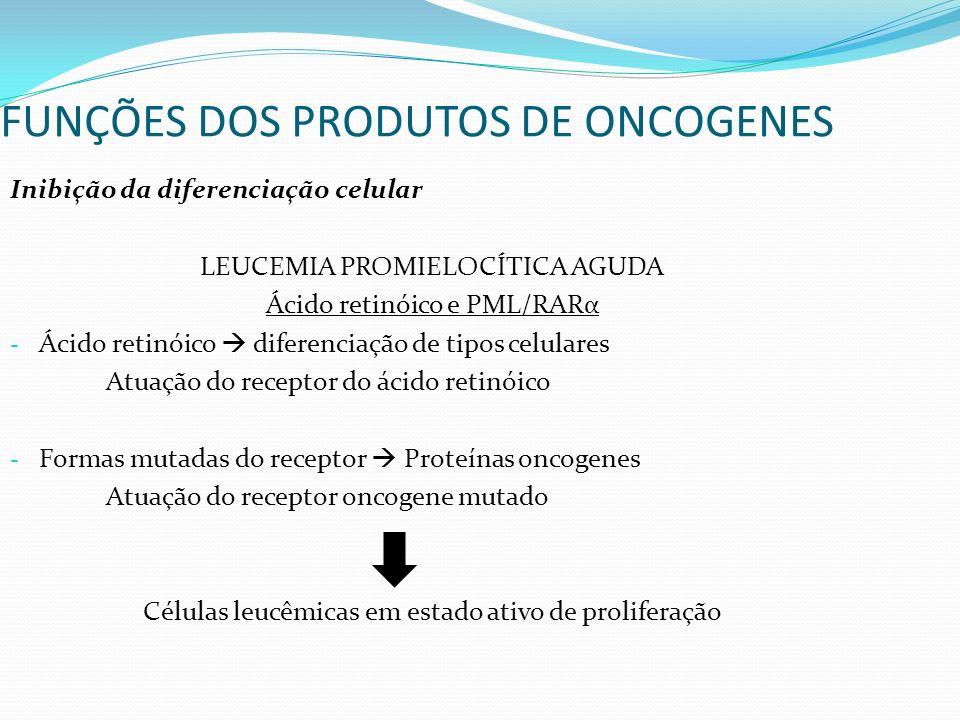 Inibição da diferenciação celular LEUCEMIA PROMIELOCÍTICA AGUDA Ácido retinóico e PML/RARα - Ácido retinóico diferenciação de tipos celulares Atuação do receptor do ácido retinóico - Formas mutadas do receptor Proteínas oncogenes Atuação do receptor oncogene mutado Células leucêmicas em estado ativo de proliferação FUNÇÕES DOS PRODUTOS DE ONCOGENES