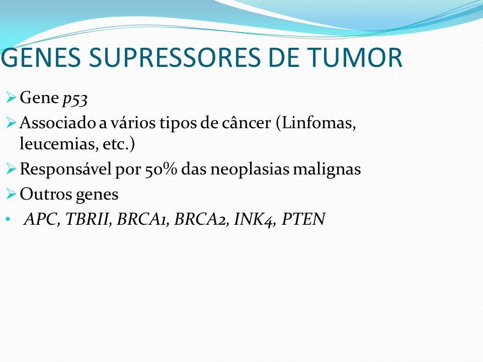 Gene p53 Associado a vários tipos de câncer (Linfomas, leucemias, etc.) Responsável por 50% das neoplasias malignas Outros genes APC, TBRII, BRCA1, BR