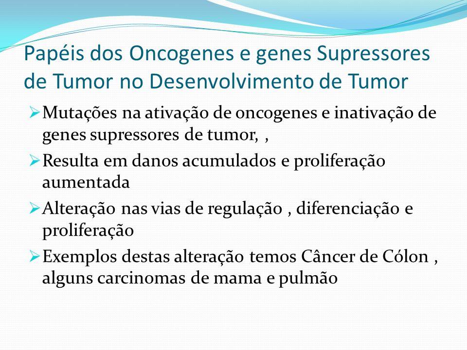 Papéis dos Oncogenes e genes Supressores de Tumor no Desenvolvimento de Tumor Mutações na ativação de oncogenes e inativação de genes supressores de tumor,, Resulta em danos acumulados e proliferação aumentada Alteração nas vias de regulação, diferenciação e proliferação Exemplos destas alteração temos Câncer de Cólon, alguns carcinomas de mama e pulmão