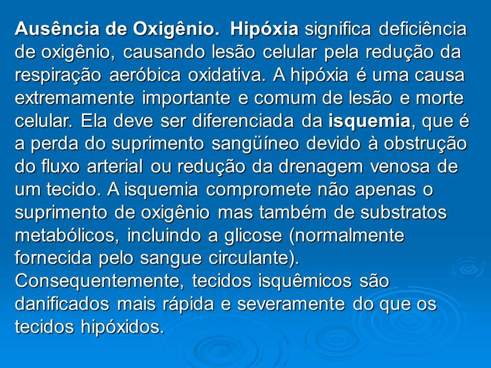 Ausência de Oxigênio. Hipóxia significa deficiência de oxigênio, causando lesão celular pela redução da respiração aeróbica oxidativa. A hipóxia é uma