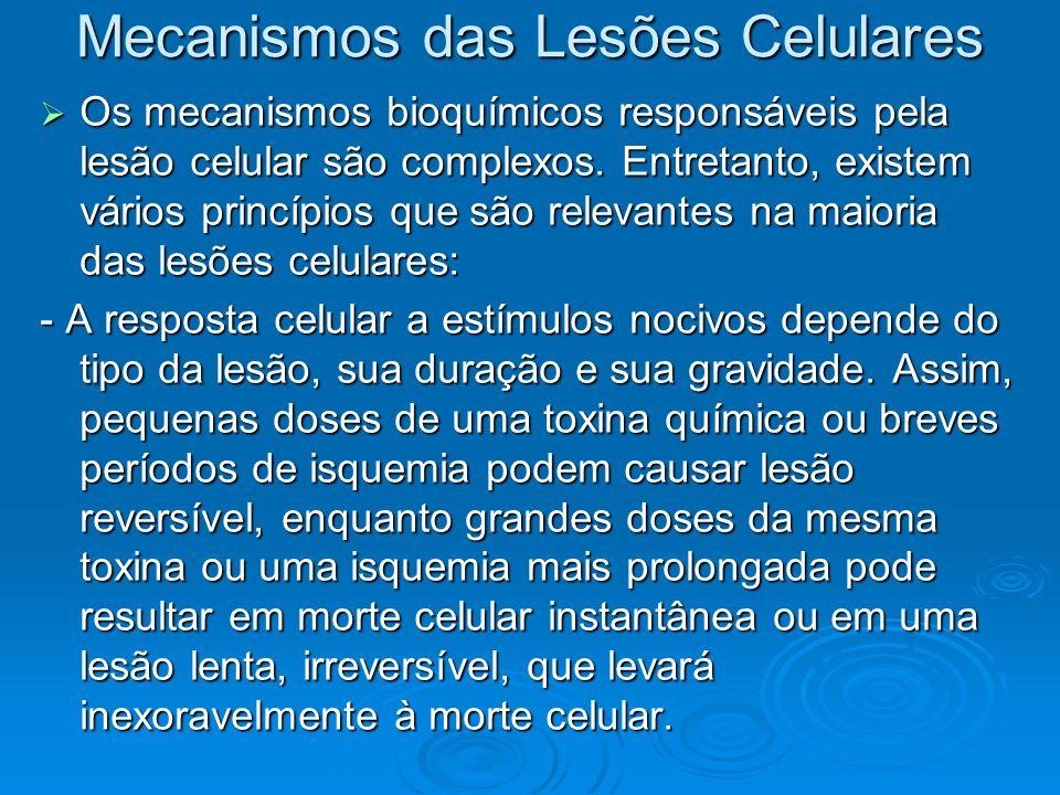 Mecanismos das Lesões Celulares As conseqüências da lesão celular dependem do tipo, estado e grau de adaptação da célula danificada.
