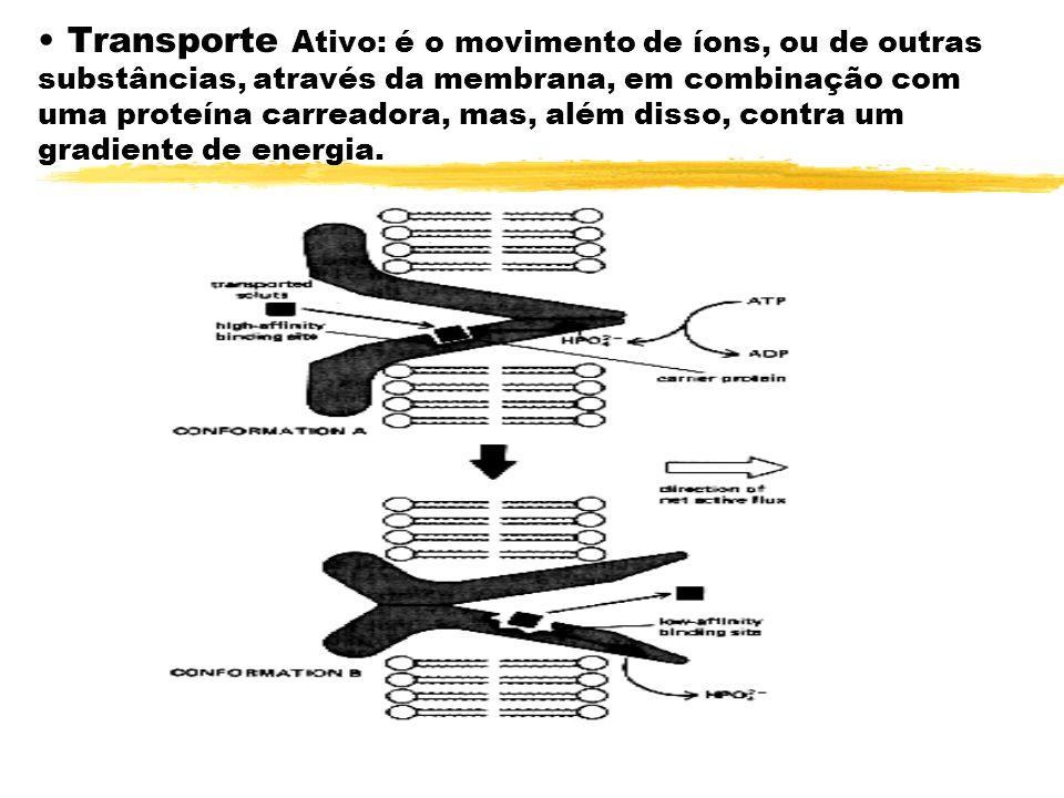 Transporte Ativo: é o movimento de íons, ou de outras substâncias, através da membrana, em combinação com uma proteína carreadora, mas, além disso, co