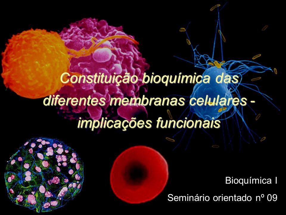 Estrutura Da Membrana (Modelo do Mosaico Fluído) Camada dupla de lípidos anfipáticos ( fosfolípidos ); Proteínas; Glicolìpidos; Glicoproteínas; Composição das membranas: 55% fosfolípidos; 25% proteínas; 13% colesterol; 4% outros lípidos; 3% Hidratos de carbono;