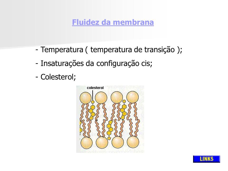 Fluidez da membrana - Temperatura ( temperatura de transição ); - Insaturações da configuração cis; - Colesterol;