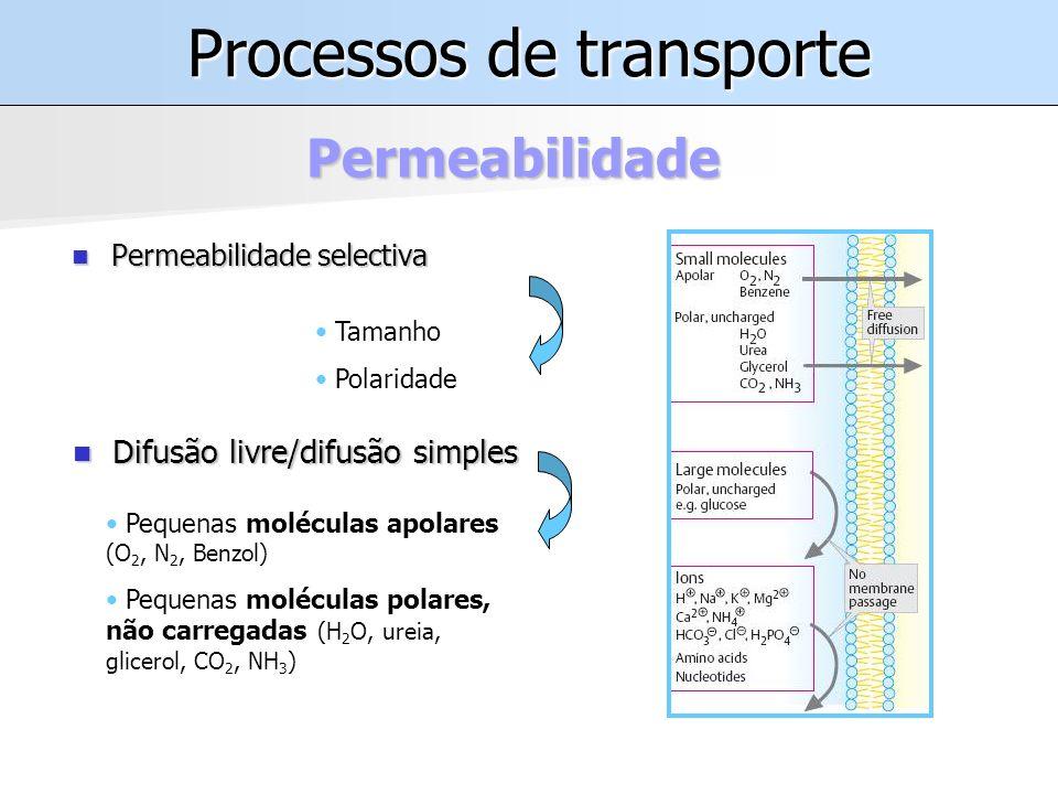Processos de transporte Permeabilidade selectiva Permeabilidade selectiva Permeabilidade Tamanho Polaridade Difusão livre/difusão simples Difusão livre/difusão simples Pequenas moléculas apolares (O 2, N 2, Benzol) Pequenas moléculas polares, não carregadas (H 2 O, ureia, glicerol, CO 2, NH 3 )