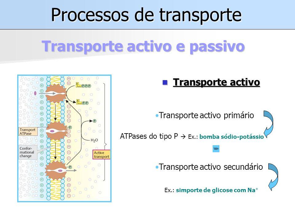 Processos de transporte Transporte activo e passivo Transporte activo Transporte activo Transporte activo primário Transporte activo secundário ATPases do tipo P Ex.: bomba sódio-potássio Ex.: simporte de glicose com Na +