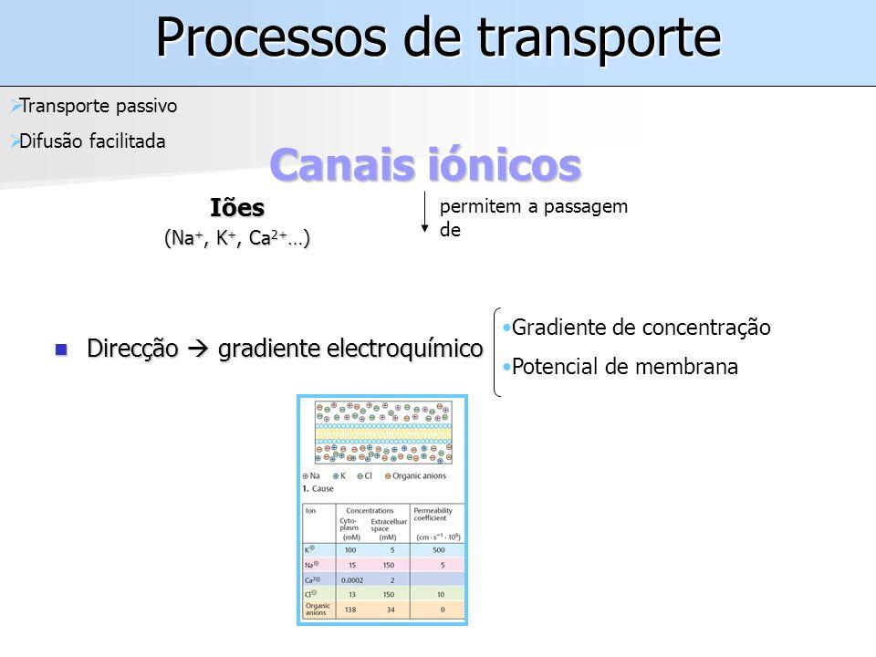 Processos de transporte Iões (Na +, K +, Ca 2+ …) Canais iónicos Transporte passivo Difusão facilitada permitem a passagem de Direcção gradiente electroquímico Direcção gradiente electroquímico Gradiente de concentração Potencial de membrana