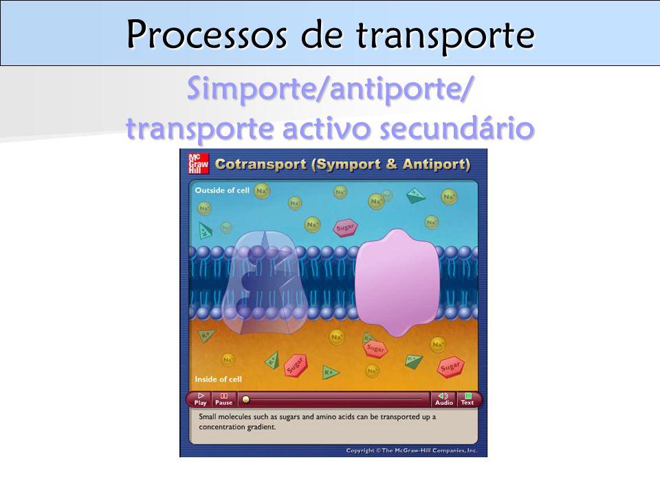 Processos de transporte Simporte/antiporte/ transporte activo secundário