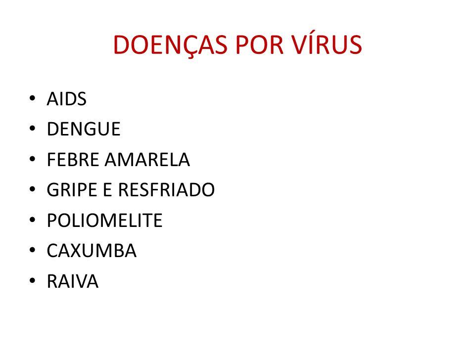 DOENÇAS POR VÍRUS AIDS DENGUE FEBRE AMARELA GRIPE E RESFRIADO POLIOMELITE CAXUMBA RAIVA