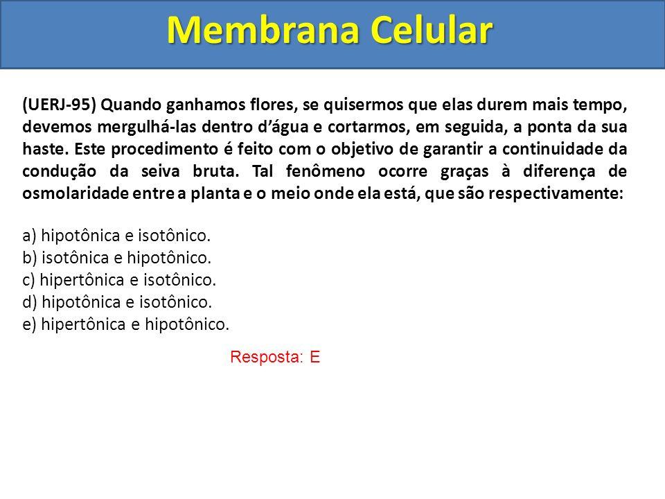 Membrana Celular Resposta: E (UERJ-95) Quando ganhamos flores, se quisermos que elas durem mais tempo, devemos mergulhá-las dentro dágua e cortarmos,