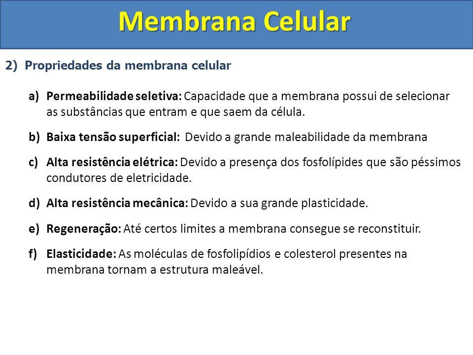 Membrana Celular 2) Propriedades da membrana celular a)Permeabilidade seletiva: Capacidade que a membrana possui de selecionar as substâncias que entr