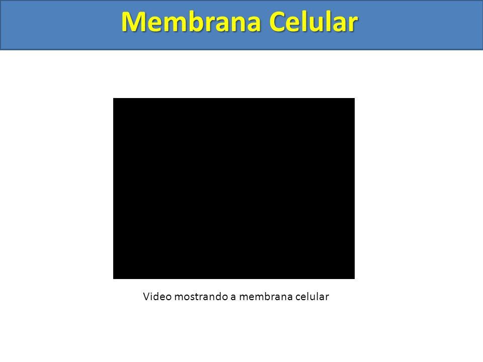 Membrana Celular Video mostrando a membrana celular
