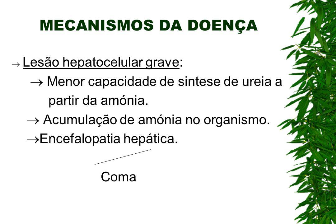 MECANISMOS DA DOENÇA Lesão hepatocelular grave: Menor capacidade de sintese de ureia a partir da amónia.