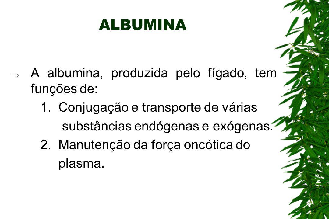 ALBUMINA A albumina, produzida pelo fígado, tem funções de: 1.