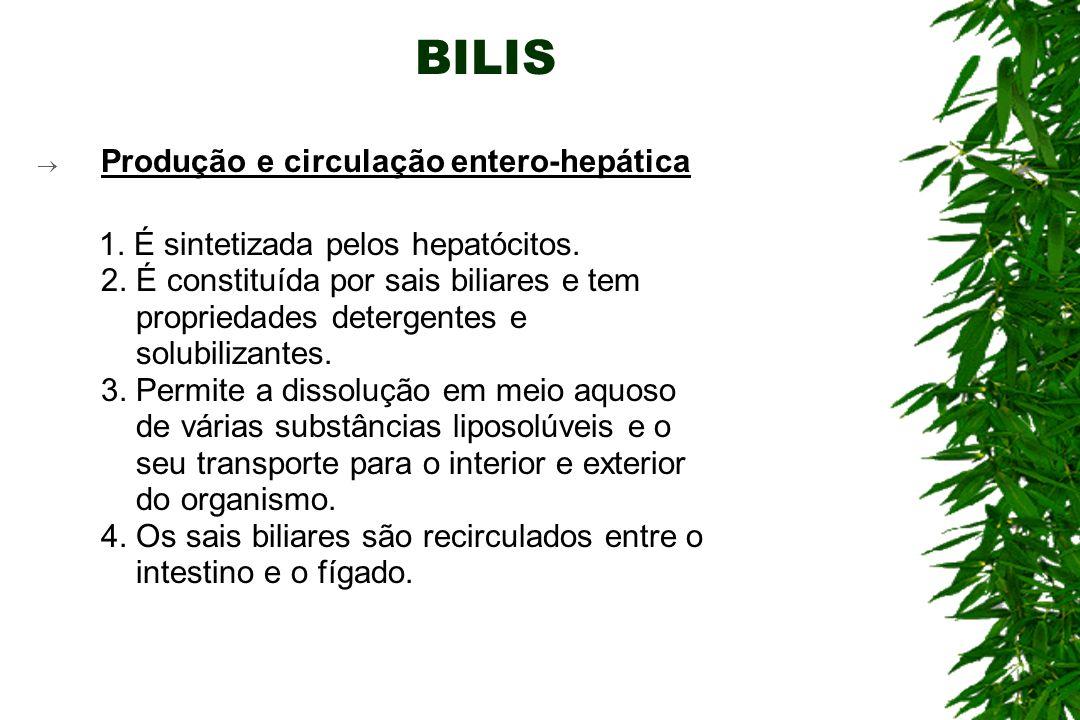 BILIS Produção e circulação entero-hepática 1.É sintetizada pelos hepatócitos.