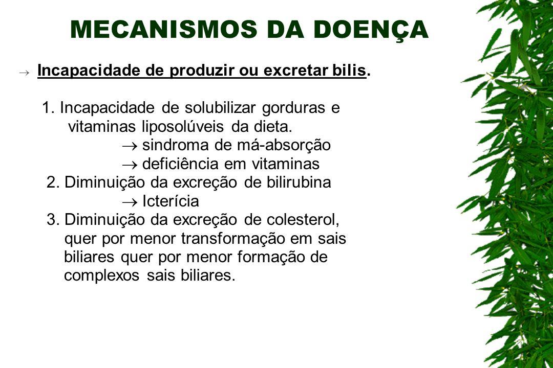 MECANISMOS DA DOENÇA Incapacidade de produzir ou excretar bilis.