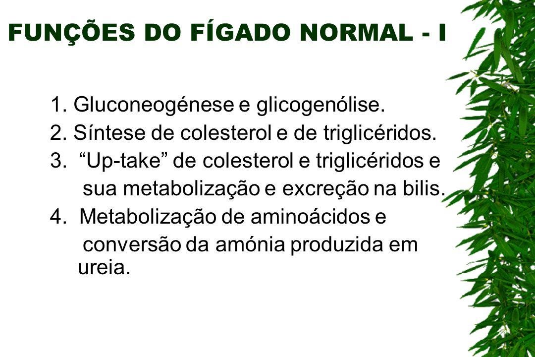FUNÇÕES DO FÍGADO NORMAL - II 5.Síntese de proteínas: - Albumina.
