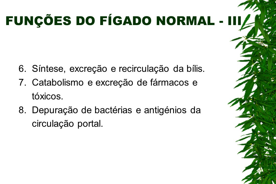 FUNÇÕES DO FÍGADO NORMAL - III 6.Síntese, excreção e recirculação da bílis.