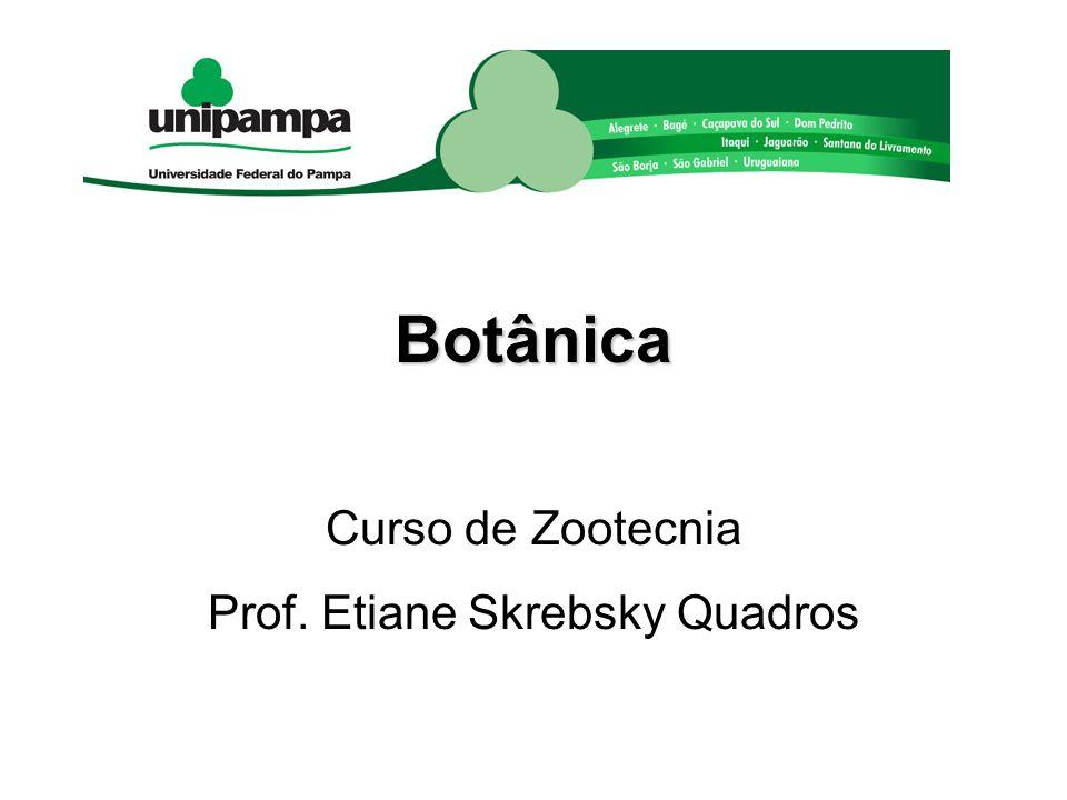 Botânica Curso de Zootecnia Prof. Etiane Skrebsky Quadros