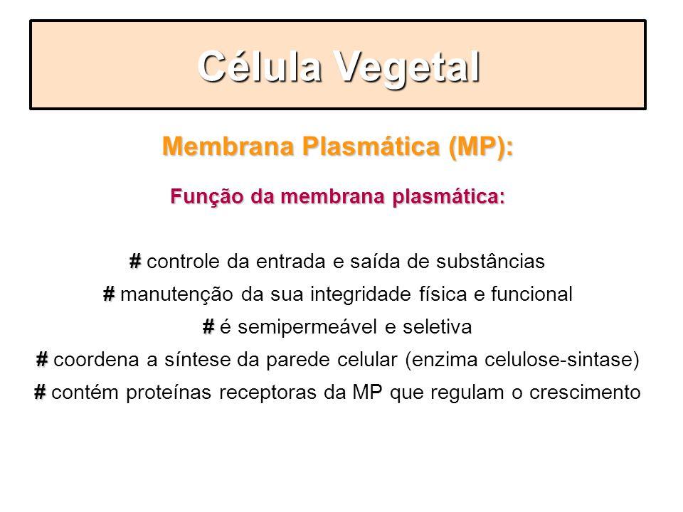 Membrana Plasmática (MP): Função da membrana plasmática: # # controle da entrada e saída de substâncias # # manutenção da sua integridade física e fun
