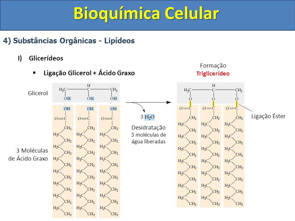 Bioquímica Celular 4) Substâncias Orgânicas - Lipídeos I)Glicerídeos Ligação Glicerol + Ácido Graxo Glicerol 3 Moléculas de Ácido Graxo Desidratação 3