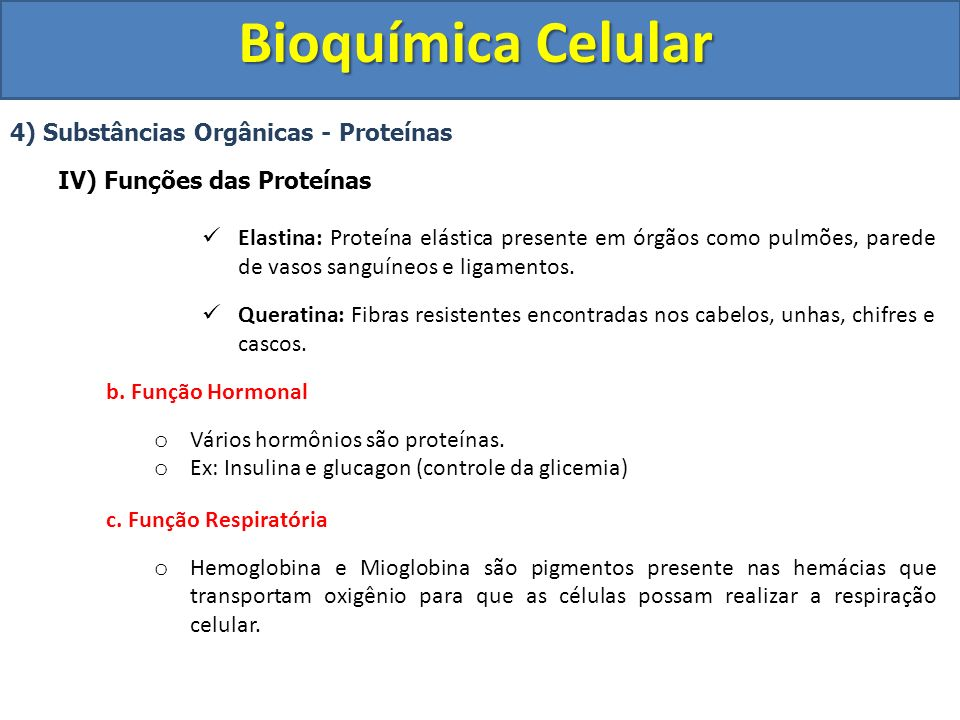 Bioquímica Celular 4) Substâncias Orgânicas - Proteínas IV) Funções das Proteínas Elastina: Proteína elástica presente em órgãos como pulmões, parede