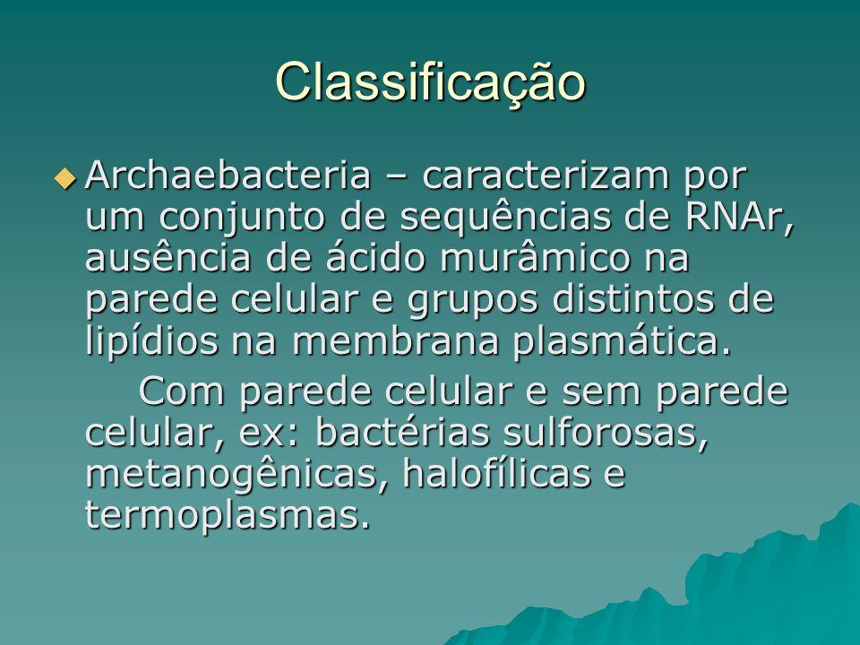 Classificação Archaebacteria – caracterizam por um conjunto de sequências de RNAr, ausência de ácido murâmico na parede celular e grupos distintos de
