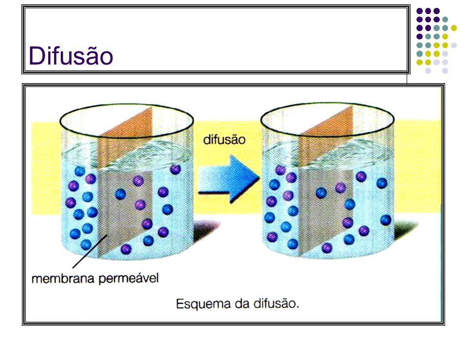 1. Difusão simples: Fluxo espontâneo de partículas, de uma região onde a concentração de uma determinada partícula é maior para outra onde a concentra
