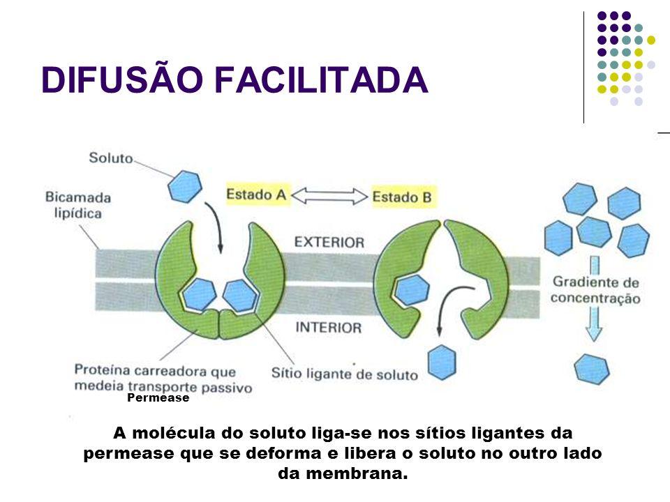 2.Difusão facilitada : é a passagem de substâncias de um meio mais concentrado para um meio menos concentrado com o auxílio de um carregador. Ex.: a g