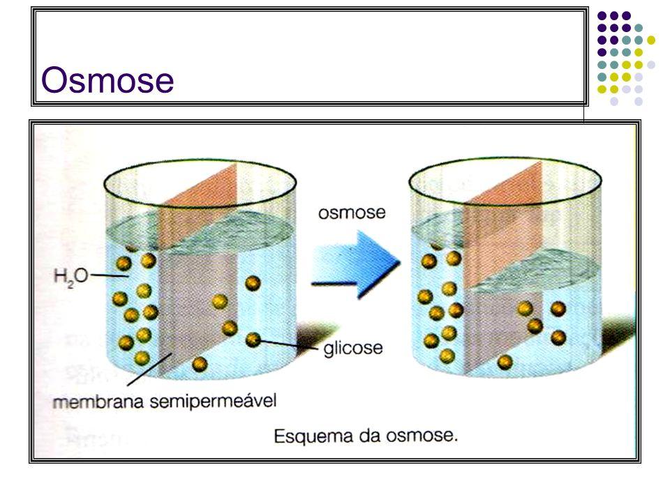Osmose : É um caso particular de difusão através de membranas semipermeáveis, onde há passagem apenas de solvente da solução menos concentrada (maior