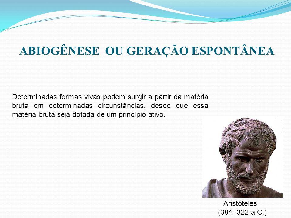 ABIOGÊNESE OU GERAÇÃO ESPONTÂNEA Aristóteles (384- 322 a.C.) Determinadas formas vivas podem surgir a partir da matéria bruta em determinadas circunst