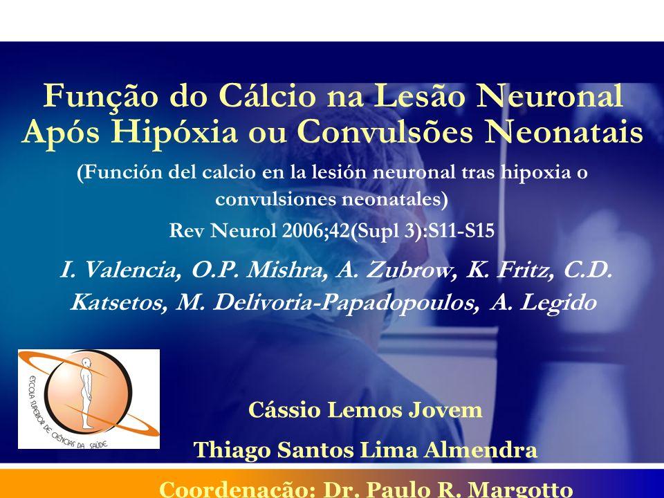 Introdução Década de 80: suposições acerca do papel do cálcio na fisiopatologia da morte neuronal em casos de encefalopatias agudas (hipóxia/isquemia, hipoglicemia aguda e convulsões).