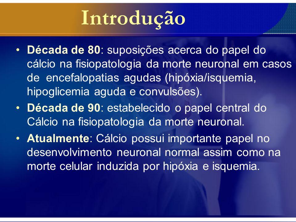 Objetivo Revisar as informações atuais sobre a função do cálcio na lesão neuronal após hipóxia ou convulsões com ênfase no período neonatal.