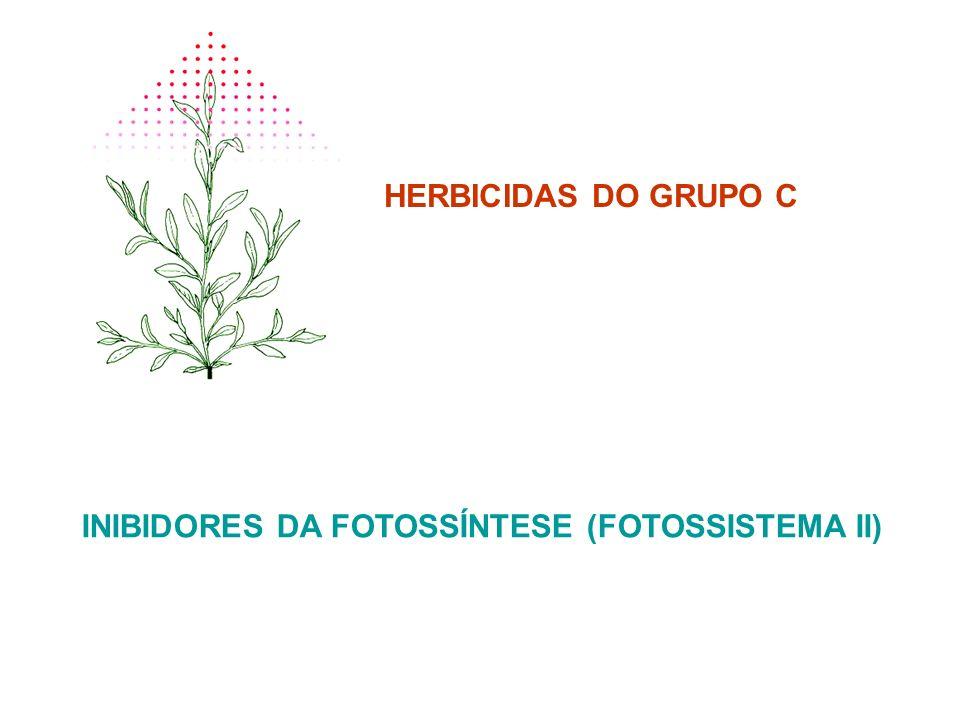 HERBICIDAS DO GRUPO C INIBIDORES DA FOTOSSÍNTESE (FOTOSSISTEMA II)