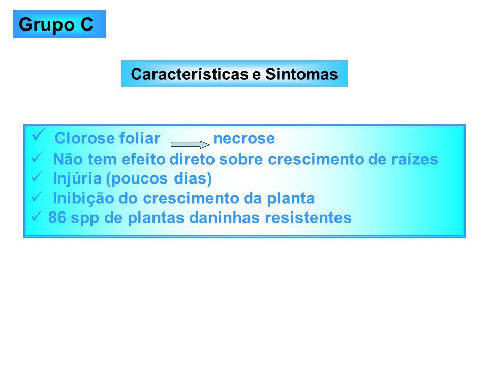 Características e Sintomas Clorose foliar necrose Não tem efeito direto sobre crescimento de raízes Injúria (poucos dias) Inibição do crescimento da p
