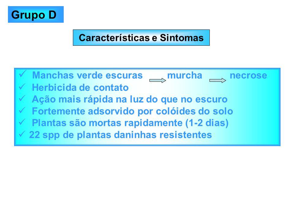 Características e Sintomas Manchas verde escuras murcha necrose Herbicida de contato Ação mais rápida na luz do que no escuro Fortemente adsorvido por