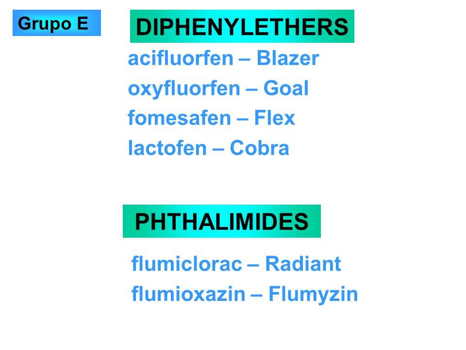 acifluorfen – Blazer oxyfluorfen – Goal fomesafen – Flex lactofen – Cobra DIPHENYLETHERS PHTHALIMIDES flumiclorac – Radiant flumioxazin – Flumyzin Gru