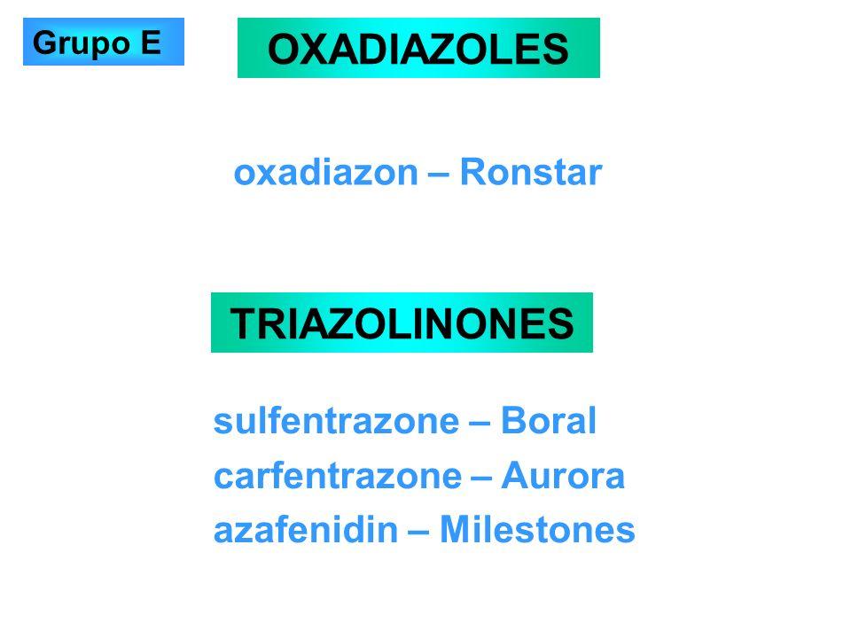 oxadiazon – Ronstar OXADIAZOLES TRIAZOLINONES sulfentrazone – Boral carfentrazone – Aurora azafenidin – Milestones Grupo E