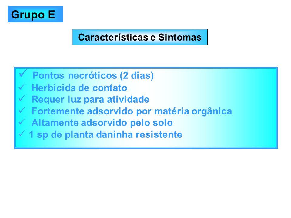 Características e Sintomas Pontos necróticos (2 dias) Herbicida de contato Requer luz para atividade Fortemente adsorvido por matéria orgânica Altamen