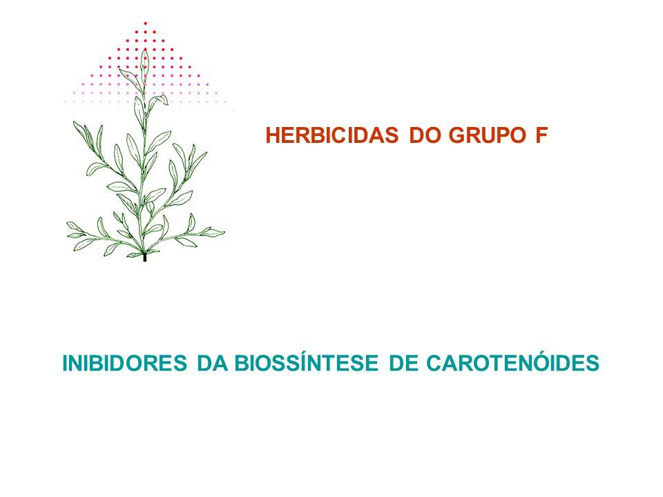 HERBICIDAS DO GRUPO F INIBIDORES DA BIOSSÍNTESE DE CAROTENÓIDES