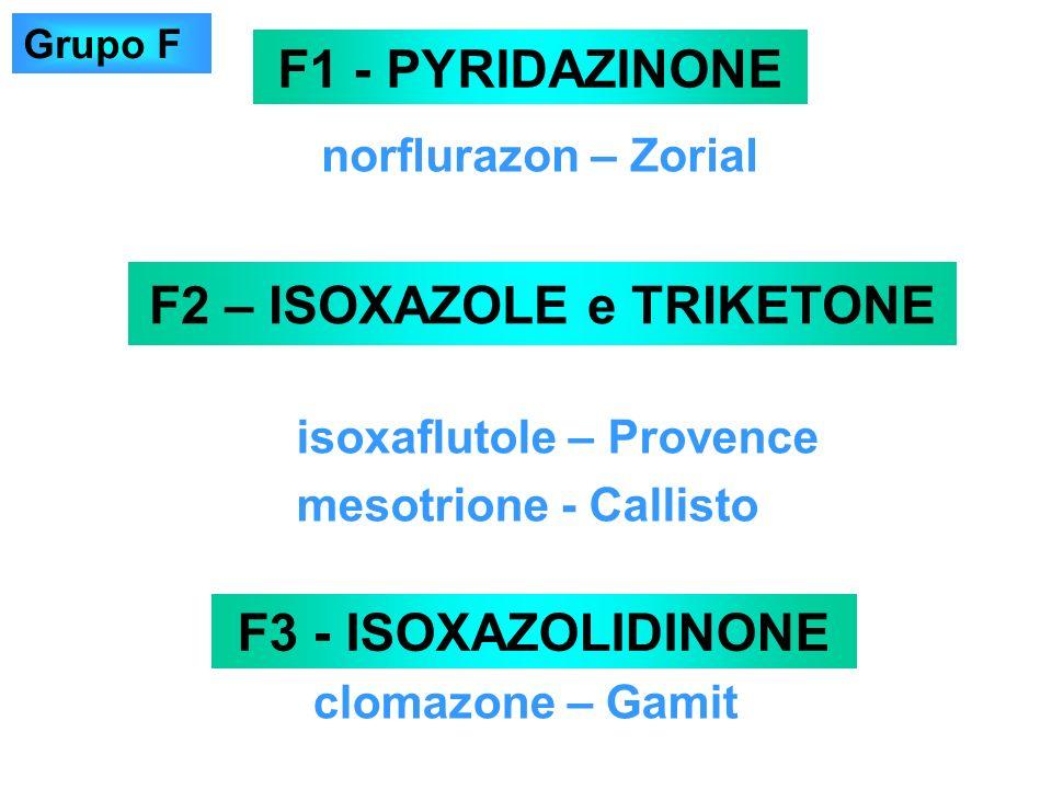 norflurazon – Zorial F1 - PYRIDAZINONE F3 - ISOXAZOLIDINONE clomazone – Gamit F2 – ISOXAZOLE e TRIKETONE isoxaflutole – Provence mesotrione - Callisto