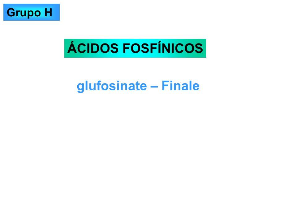 glufosinate – Finale ÁCIDOS FOSFÍNICOS Grupo H