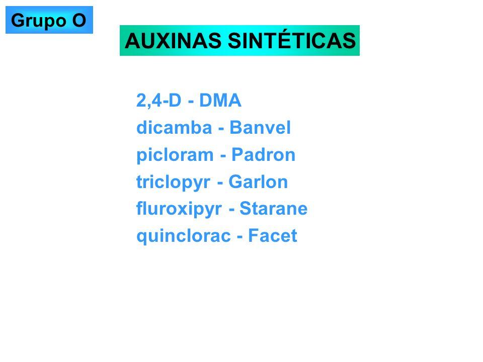 2,4-D - DMA dicamba - Banvel picloram - Padron triclopyr - Garlon fluroxipyr - Starane quinclorac - Facet AUXINAS SINTÉTICAS Grupo O