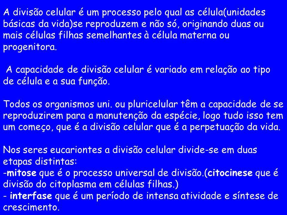 A divisão celular é um processo pelo qual as célula(unidades básicas da vida)se reproduzem e não só, originando duas ou mais células filhas semelhante