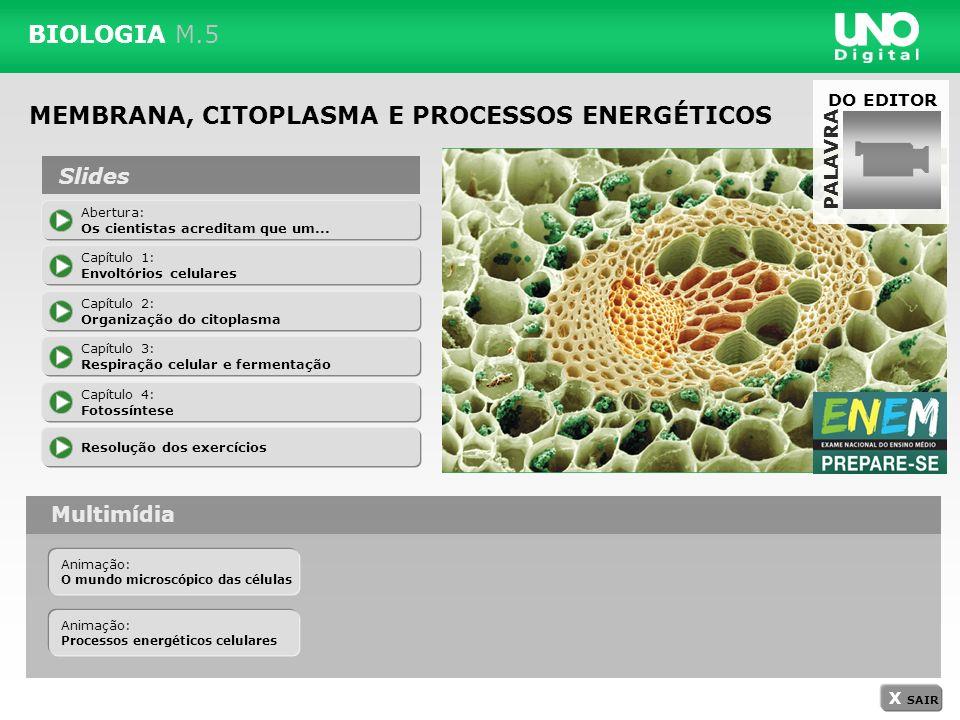 BIOLOGIA M.5 MEMBRANA, CITOPLASMA E PROCESSOS ENERGÉTICOS Abertura: Os cientistas acreditam que um... Capítulo 1: Envoltórios celulares Capítulo 2: Or