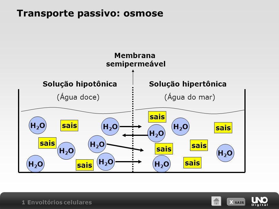 X SAIR Transporte passivo: osmose Membrana semipermeável Solução hipotônicaSolução hipertônica (Água doce)(Água do mar) H2OH2O sais H2OH2O H2OH2O H2OH