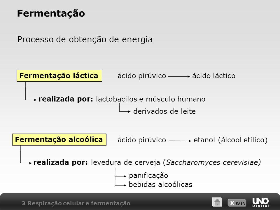 X SAIR Fermentação Processo de obtenção de energia ácido pirúvicoácido láctico ácido pirúvicoetanol (álcool etílico) realizada por:lactobacilos e músc